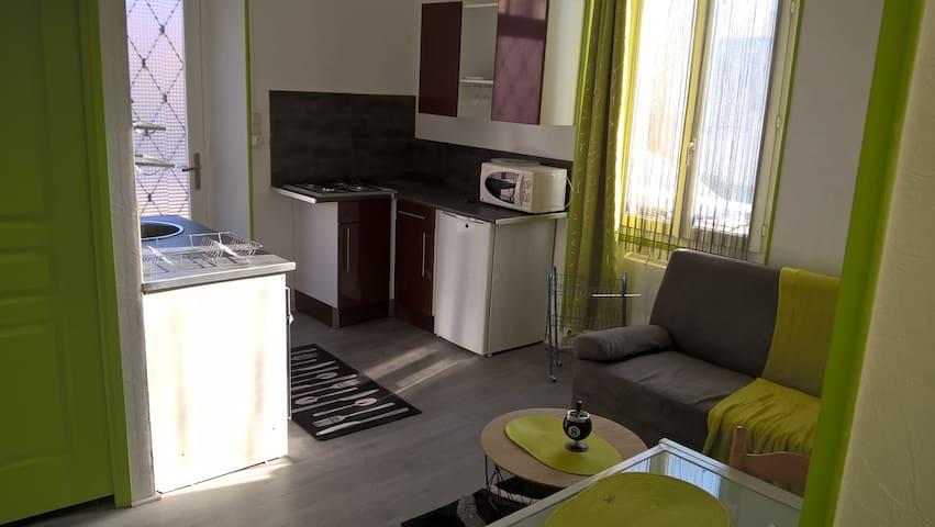 Charmant T2 meublé - Pau - Lägenhet