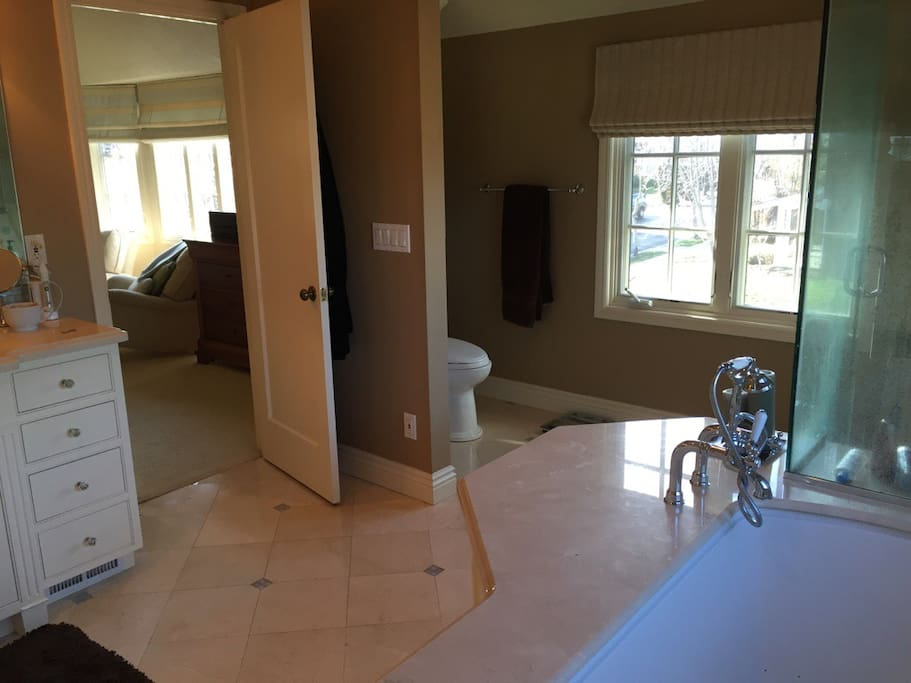 Master Bathroom, separate spa tub and shower with dual shower heads