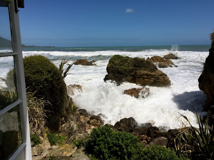 View from the back door step during a king tide
