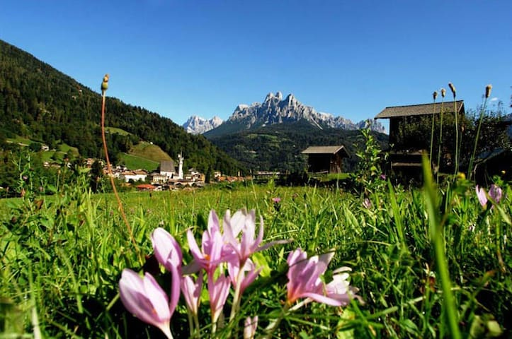 Your holiday in Trentino