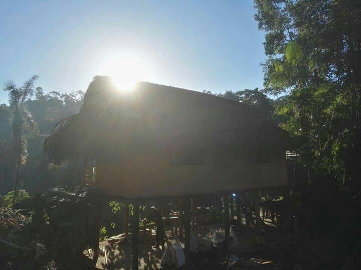 "Mystic Jungle Home ""La Carmelita"""