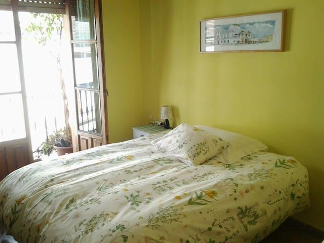 En pleno centro habitación doble en bonito piso - Sevilla - Bed & Breakfast