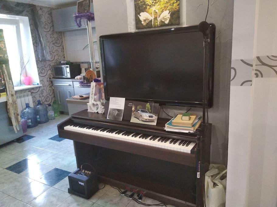 фортепиано, микрофон, комбоусилитель, плазма