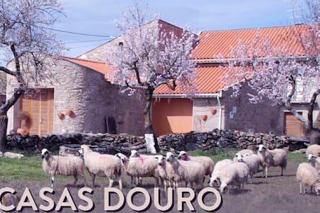 Casas Douro-Casas de Turismo Rural