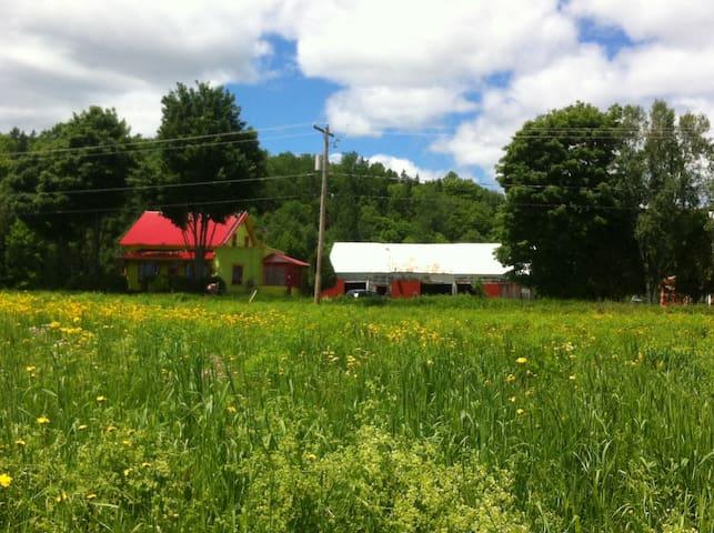 Maison centenaire à la campagne ! - Saint-Paulin - House