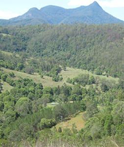 Kunghur Rainforest Farm - Kunghur
