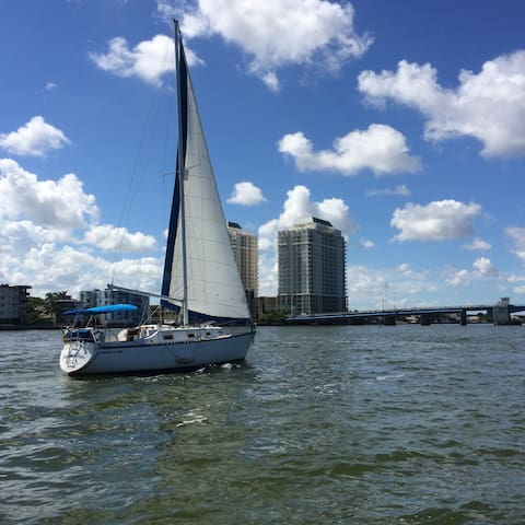 Cozy Sailboat with AC, Pool and Spa - Miami - Boat
