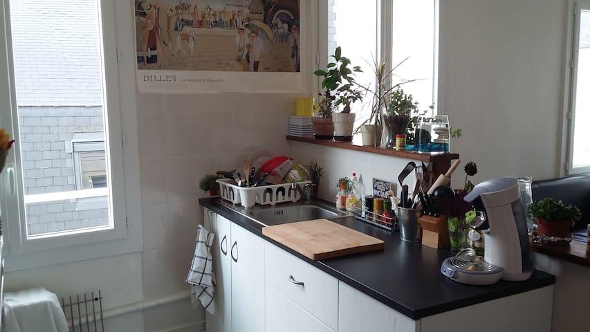 Appart du cygne - Châtellerault - Appartement