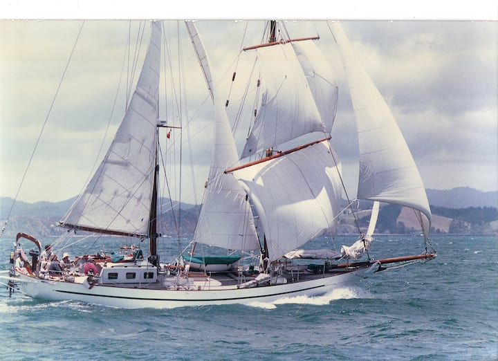 Sailing Adventure on a traditional square rigger
