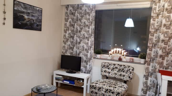 Viihtyisä yksiö Kankaanpää/ Cozy apartment