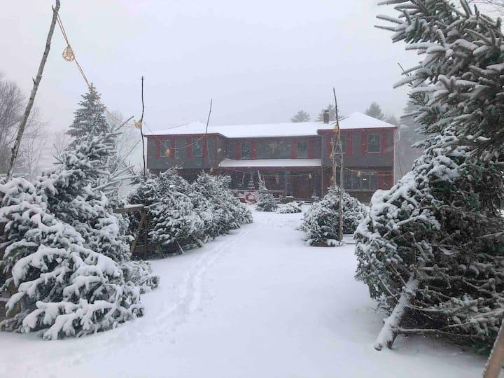 Cozy Christmas Tree Farm Apartment-Maine Farm Stay