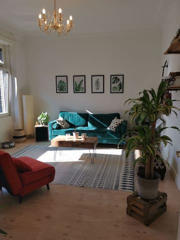 Wunderschöne Altbauwohnung in Mainzer Neustadt