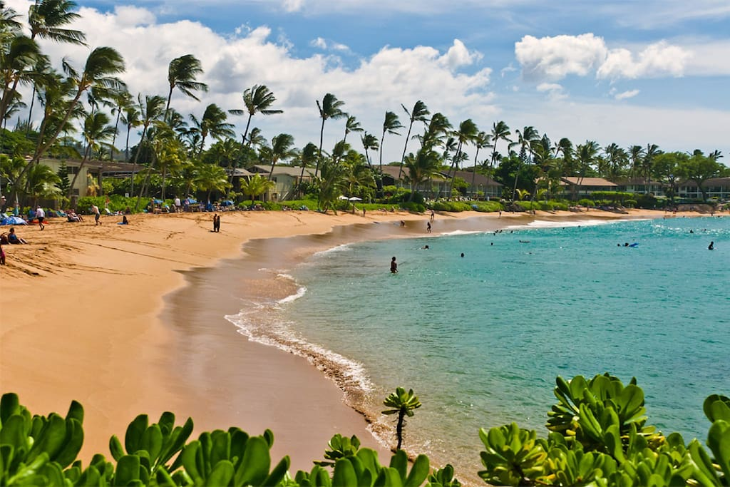 Napili Bay ~  a leisurely 10 minute walk from the condo