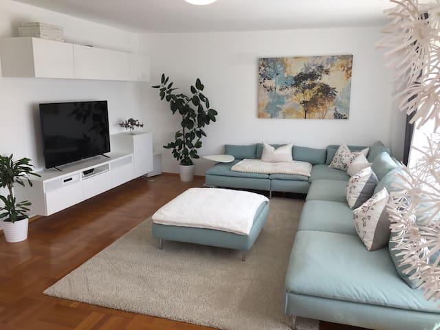 Familienfreundliches Feriendomizil am Bodensee - Lauterach - House