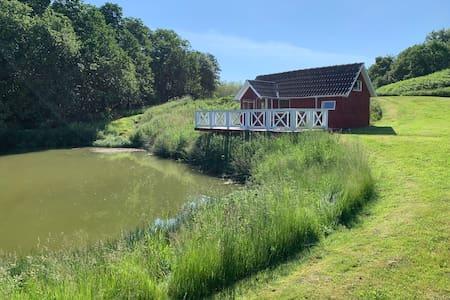 Unique nature at Tjele Langsø