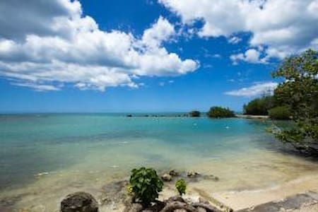 Awesome 2B/2B Ocean View PH & Wifi - 카보 로호(Cabo Rojo)