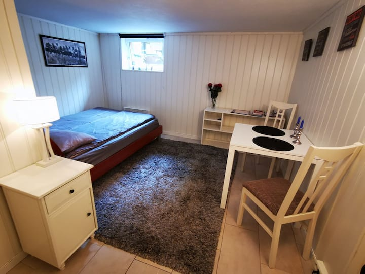 Room in Oslo with own bathroom! 15 min to sentrum