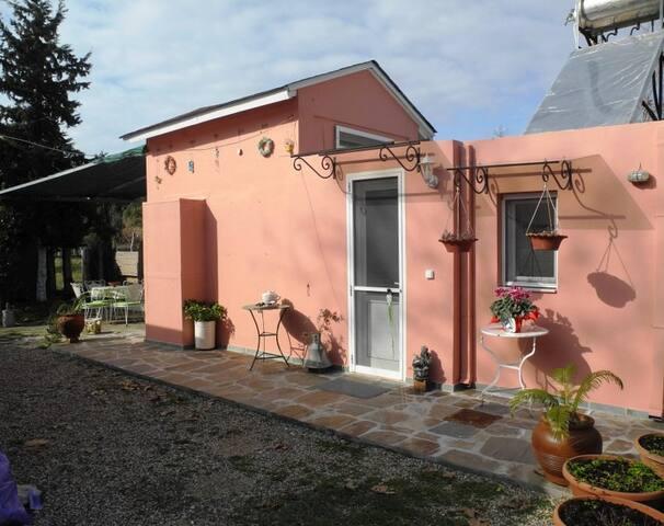 Afroditis home