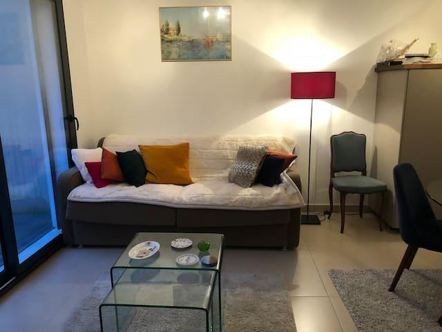 Convertible Sofa (160x200)