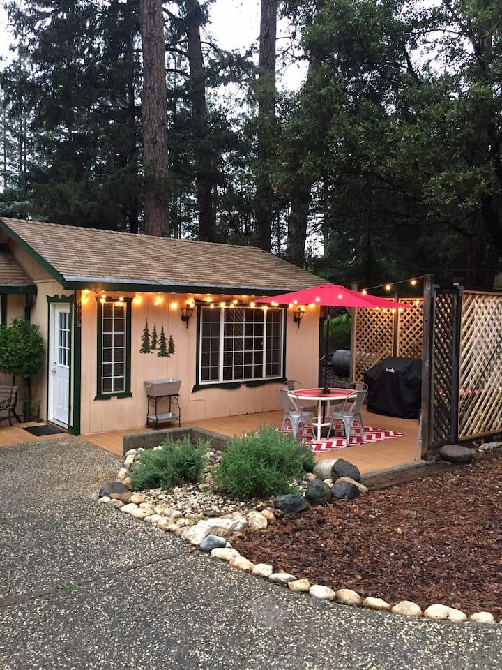 Cozy cabin - conveniently located