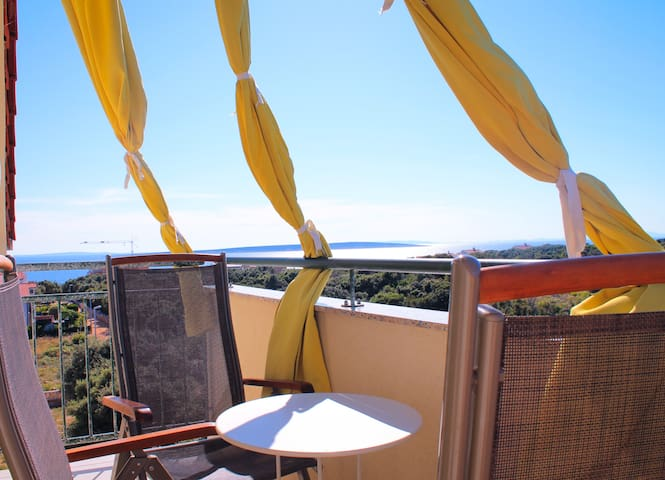 Mandre, island Pag, Croatia - Mandre - Apartment