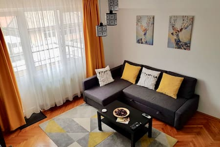 Homely comfort in the heart of Timisoara