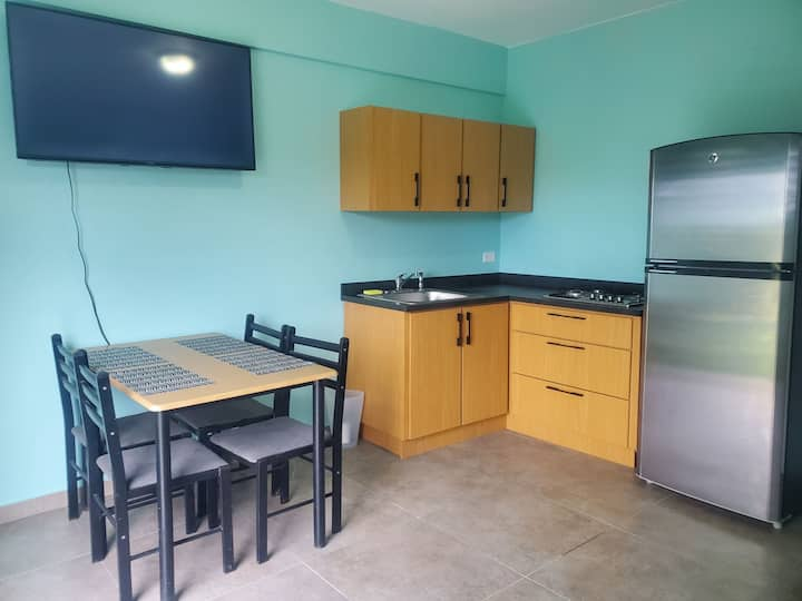 New Close to Town Apartment In Rincon