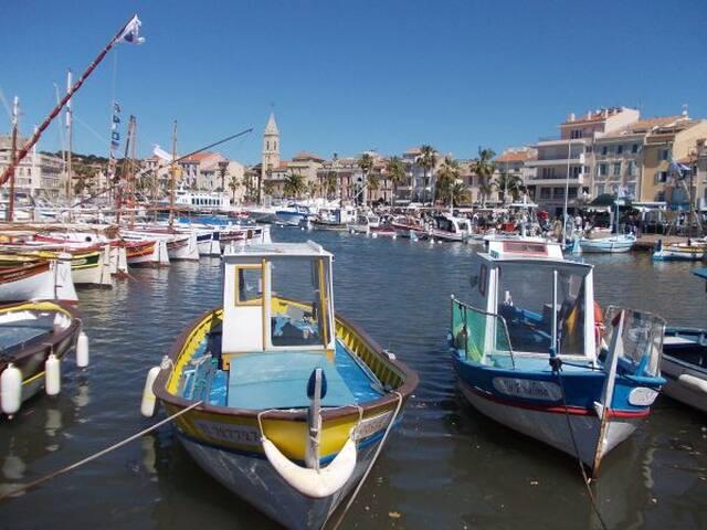 Au port de Sanary