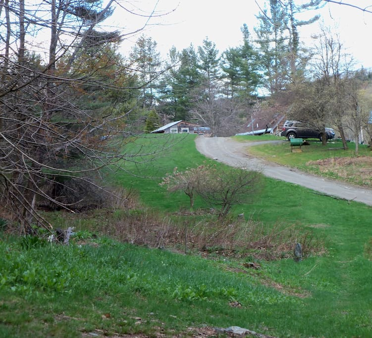 The view from in front of the house, looking east. The other side of the house leads directly into deep woods.