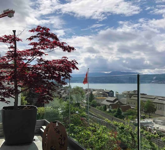 2 rooms top-floor with lake view