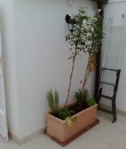 Bellavista affittacamere - Palo del Colle
