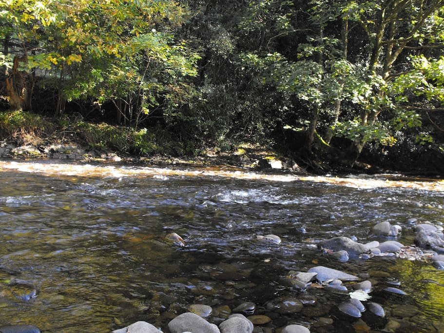 River with Fishing rights on property