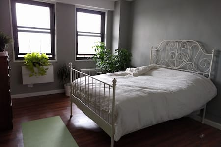 Sunny 1-bedroom 2 blocks from park. HUGE balcony! - Brooklyn