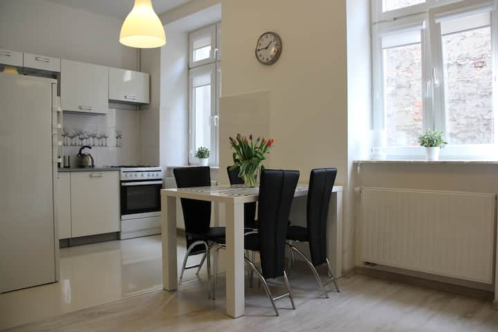 Nowoczesny apartament -Stare Miasto