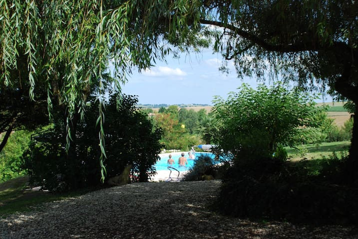 Jolie maison dans un parc de 9000 m2 avec piscine - Lectoure - House