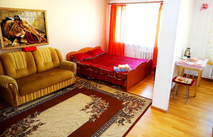 """Апартаменты """"Две Подушки"""" ул. Бабушкина 147"""