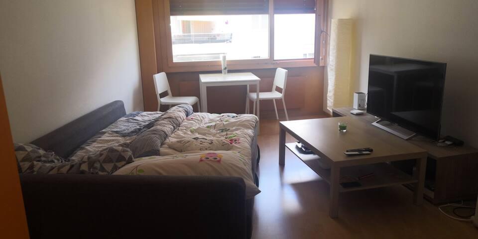 1, 5 Zimmer Wohnung im Zentrum Luzern