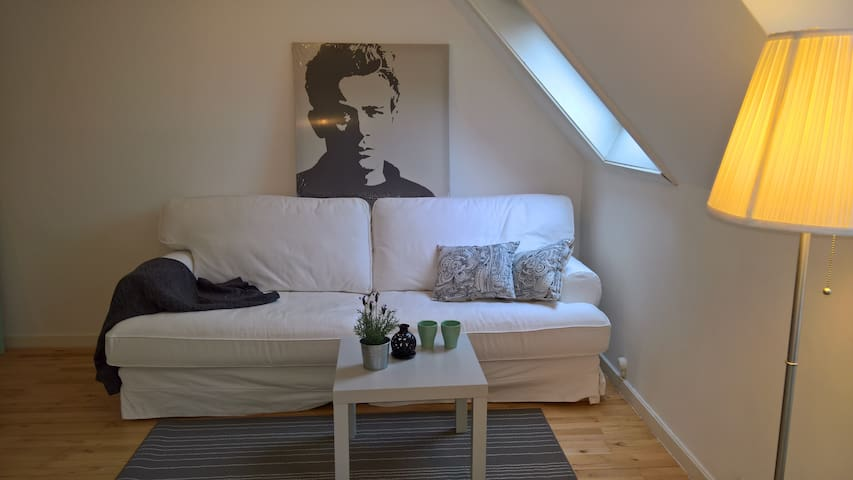 Charming, cozy apartment in Virum near Copenhagen - Virum