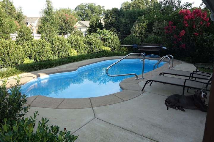 Chill by your own private pool & dogs stay FREE!!