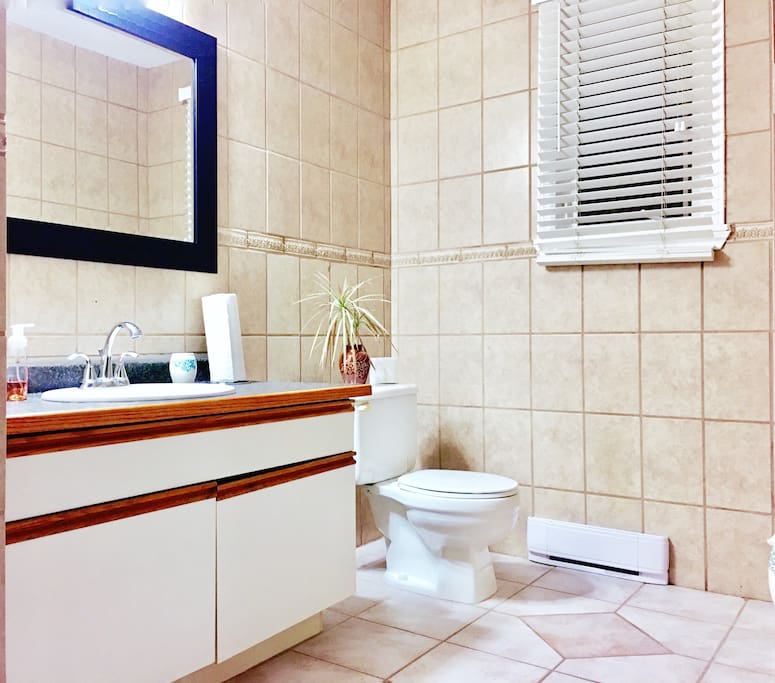 The main bathroom - this is a shared bathroom, there is an ensuite two piece bathroom attached to the master bedroom