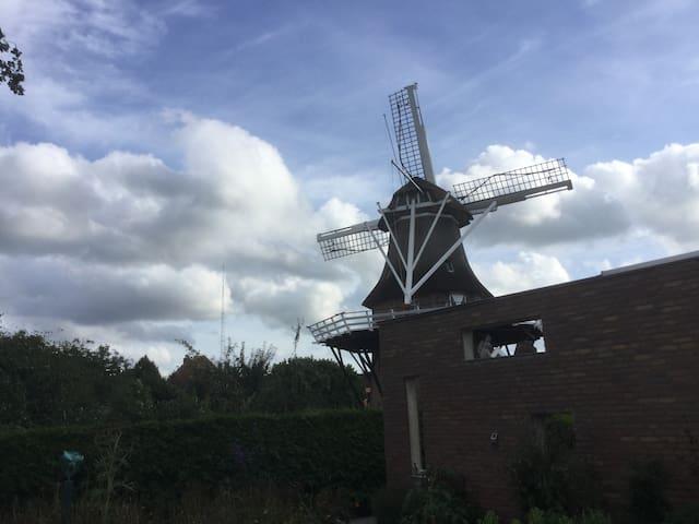 Dorps studio met loft,terras en zicht op windmolen