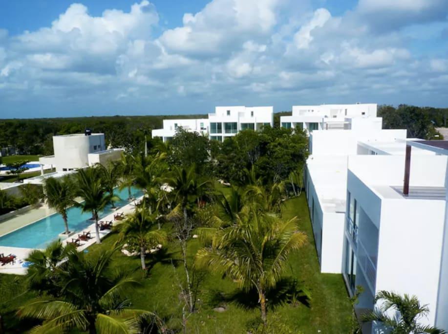 Tropical lush gardens