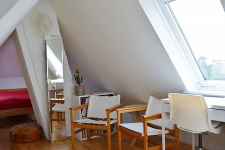 Nice room in the attic, with cheap bike rent - House