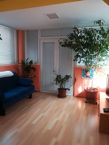 Branka - Two Bedroom Apartment with Terrace