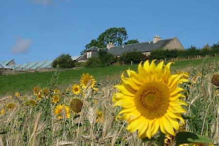 Garden Bank, lovely views, walks, wifi - Kelso