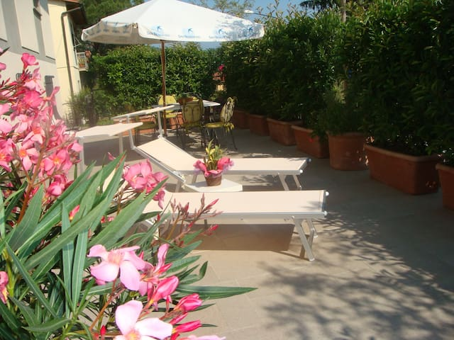 Apartment gallo Nero   - Greve In Chianti - Departamento