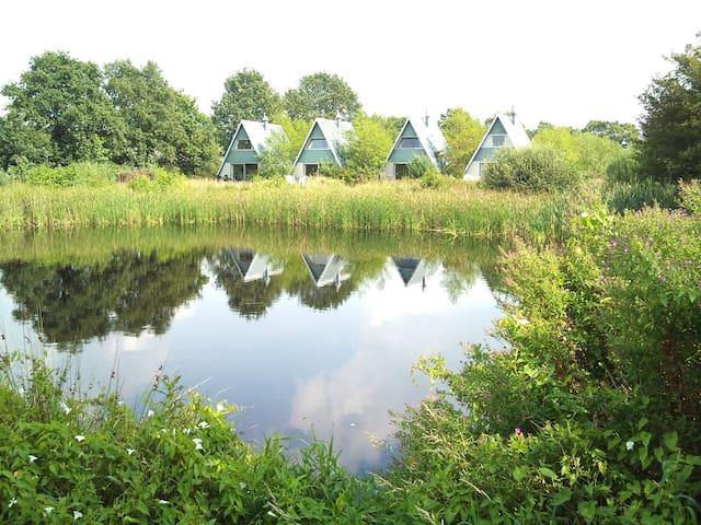 Natuurlijke ruimte in Friesland! - Twijzelerheide - Apartament