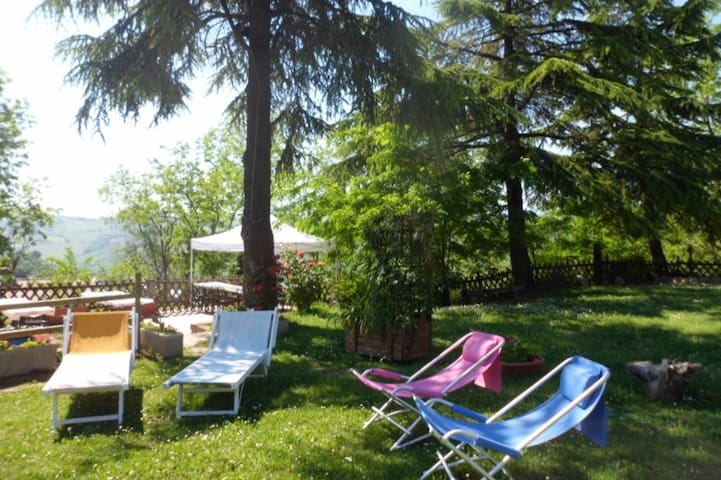 Agriturismo La Quiete, relax, natura, sole, e... 1