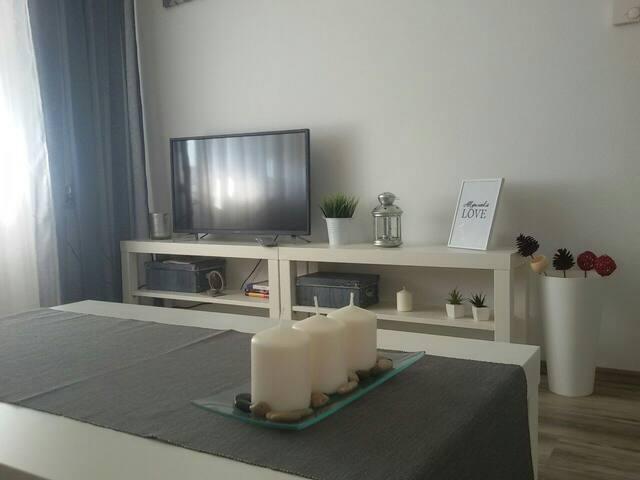 Studio apartman Toplica