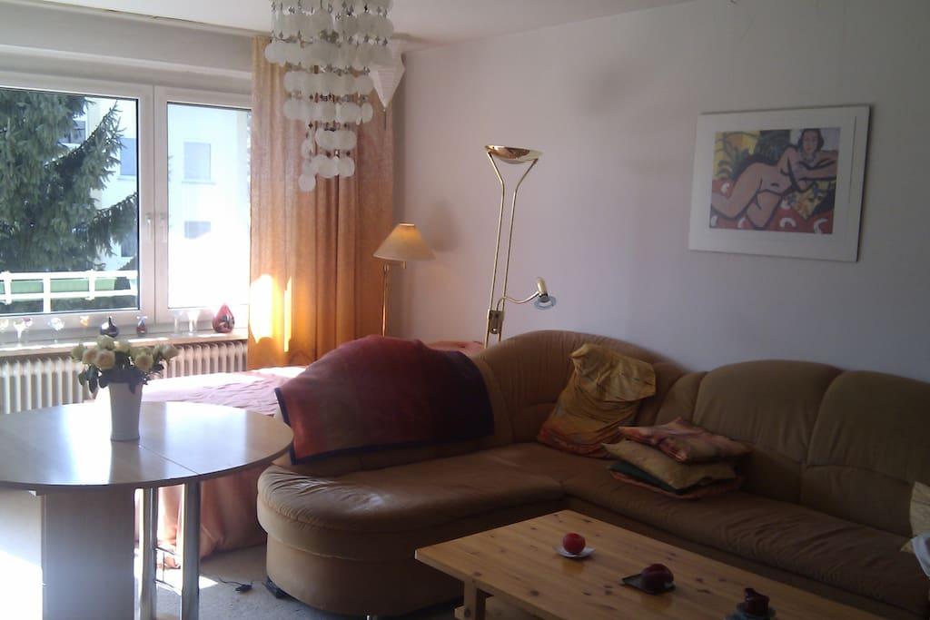 German Airbnb Living Room